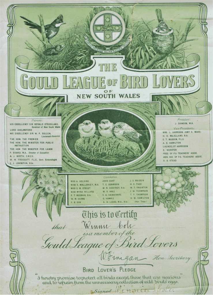 Image inserted. Gould League of Bird Lovers of New South Wales Certificate c. 1914. Private collection, courtesy Janette Pelosi.